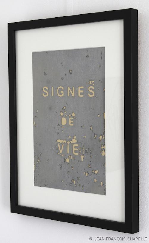 signes-de-vie_2019_site_jean-francois-chapelle-copie